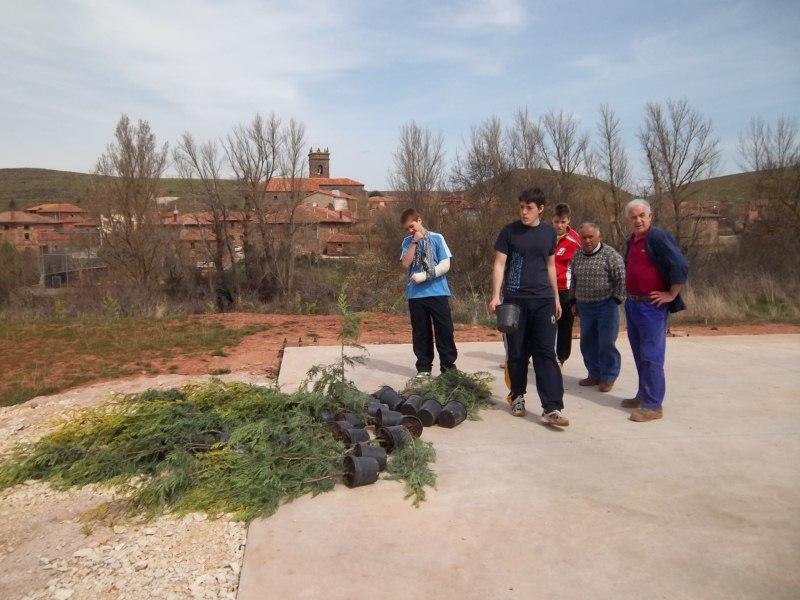 Grupo de personas plantando un arbol